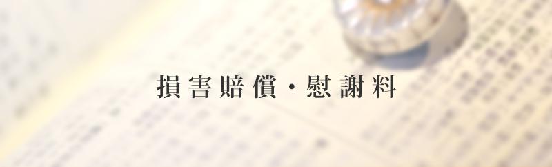「損害賠償・慰謝料」タイトルイメージ
